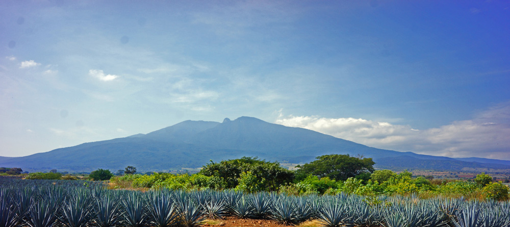 Volcano in the Tequila Valley